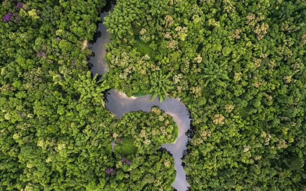 Αμαζόνιος - Νότιο Περού