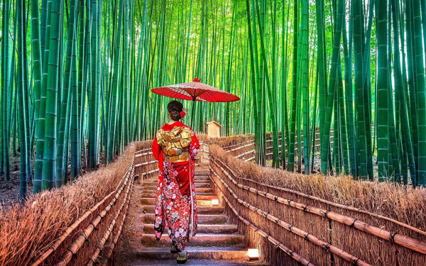 Ιαπωνία - Ταξίδι στη Χώρα του Ανατέλλοντος Ηλίου